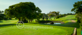DCC Beachwood 4th PAR 4 A.jpg